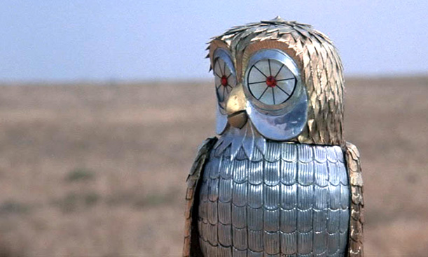 bubo-owl